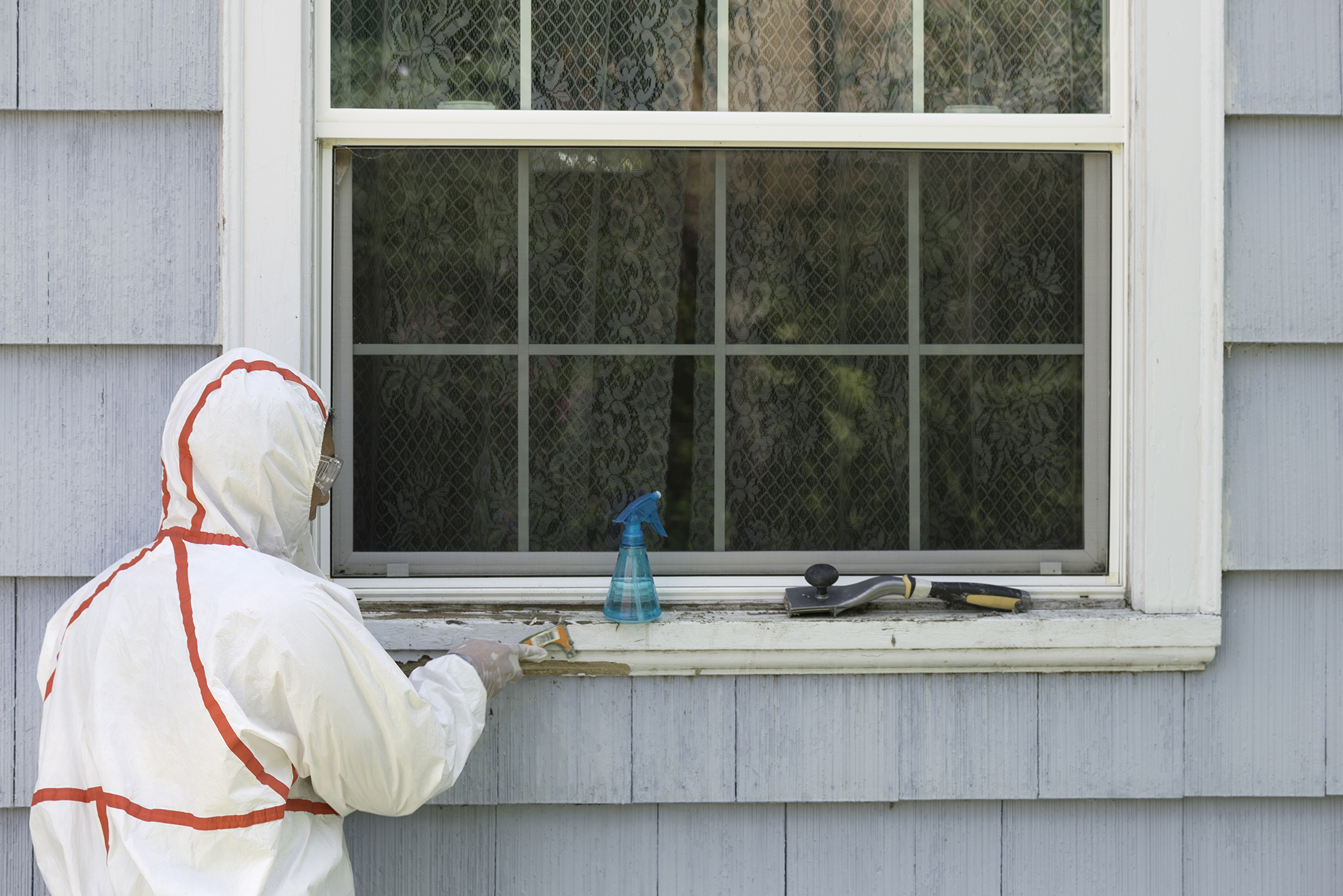 Lead paint removal Services